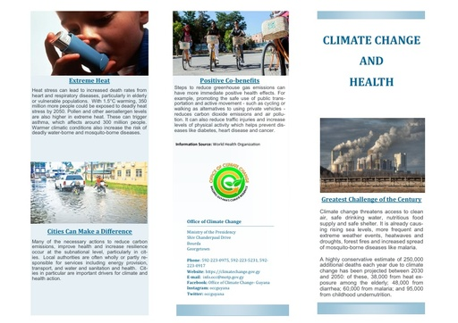 Climate Change and Health Brochure